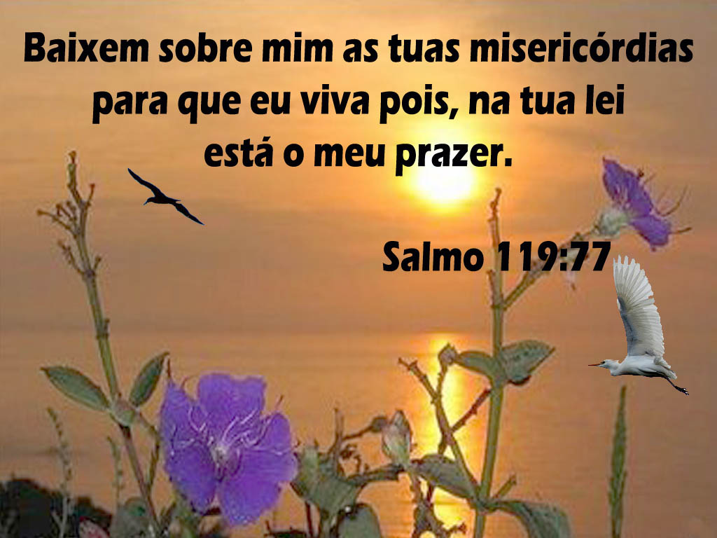 http://crystalart.arribaweb.com.br/product_images/l/946/VER_SALMO_119-77__64953_zoom.jpg